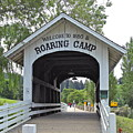 Roaring Camp Covered Bridge by Michele Myers