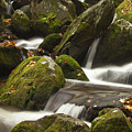 Roaring Fork Waterfall by Andrew Soundarajan