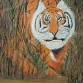 Roaring Tiger James by Michelle Ludington