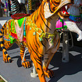Roaring Tiger Ride by Garry Gay