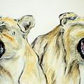 Roaring Times by Cori Solomon