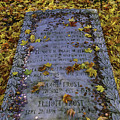 Robert Frosts Grave by Garry Gay