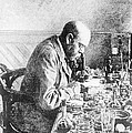 Robert Koch, German Bacteriologist by Wellcome Images