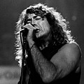 Robert Plant-0041 by Timothy Bischoff