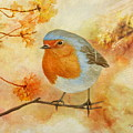 Robin Among Flowers by Angeles M Pomata