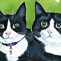 Robin And Batcat - Twin Tuxedo Cat Painting by Dora Hathazi Mendes