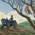 Robin In Field Looking At Farmer by Martin Davey