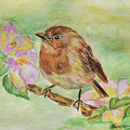 Robin In Flowers by Olga Hamilton