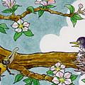 Robin Nest by Lash Larue