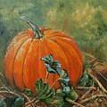 Rochester Pumpkin by Rebecca Hauschild