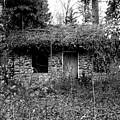 Rock Cabin Black And White by Laurie Kidd