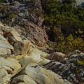 Rock Climbing by Miranda Strapason