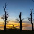 Rock Creek Silhouette by Brian Wallace
