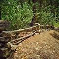 Rock Fence by John Myers