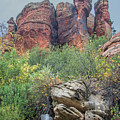 Rock Formation 8272-101817-1ve2 by Tam Ryan
