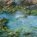 Rock Formations In The Sea, Bird Rock by Panoramic Images