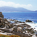Rock Formations On The Coast, 17-mile by Panoramic Images