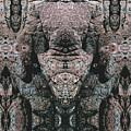 Rock Gods Elephant Stonemen Of Ogunquit by Nancy Griswold