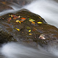 Rock In Water by Itai Minovitz