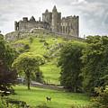 Rock Of Cashel Cashel County Tipperary by Patrick Swan
