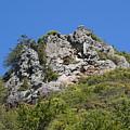 Rock On Tamalpais by Ben Upham III