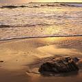 Rock On The Beach by Viktor Savchenko