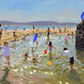 Rock Pool, Tenby by Andrew Macara