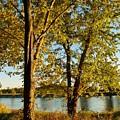 Rock River In October by Denise Irving
