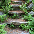 Rock Stairs by Carol Groenen