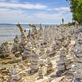Rock Structures On Lake Michigan by Nikki Vig