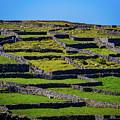 Rock Walls Of Inisheer, Aran Islands by James Truett
