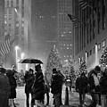 Rockefeller Center Christmas Tree Black And White by John Tesoriero