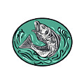 Rockfish Jumping Color Oval Drawing by Aloysius Patrimonio