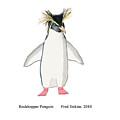 Rockhopper Penguin by Fred Jinkins