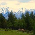 Rockies by Luke  Clarkson