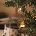 Rockin Christmas by Andrea Anderegg
