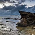 Rockin The Seascape by Merrillie Redden