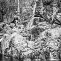 Rockin Water by Laurent Fox
