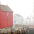 Rockport Fog by Susan Cole Kelly