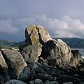 Rocks At Carmel by Thomas Firak