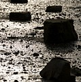 Rocks At Low Tide by Gene Sizemore