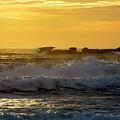 Rocks At Palm Beach At Sunrise by Sheila Smart Fine Art Photography