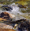 Rocks In A Stream 2a by Sharon Talson