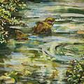 Rocks In A Stream by Laura Ross
