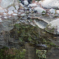 Rocks In Reflection by Suzanne Gaff