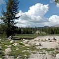Rocks Of Tuolumne Meadows by LeeAnn McLaneGoetz McLaneGoetzStudioLLCcom