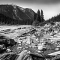 Rocky Banks Of Kootenay River by Eduardo Tavares