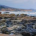 Rocky California Beach by Joan Carroll