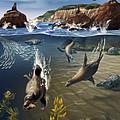 Rocky California Shore by Jim Dowdalls