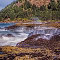 Rocky Coast by Diana Powell